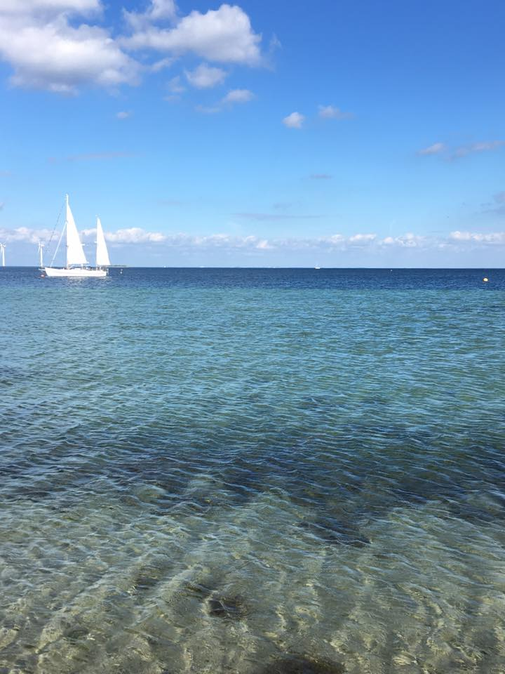 Amager Beach or is it the Caribbean? (source - Pulped Travel)