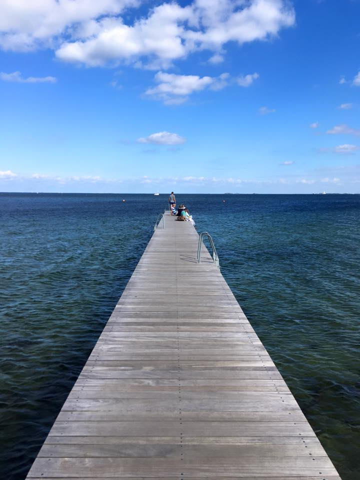 Dive in at Amager Beach (source - Pulped Travel)